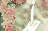 نماز-حضرت علی