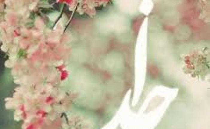 احترام به سالمندان-حضرت محمد