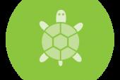 گذاشتن و برداشتن قلم turtle