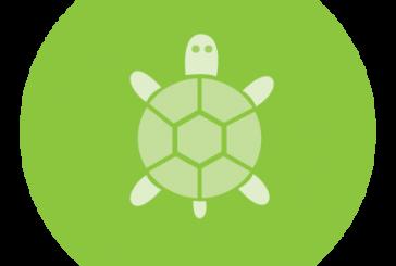 رسم yinyang با turtle